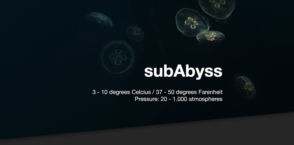 Sub–Abyss